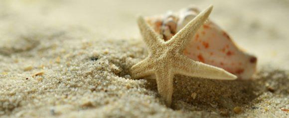 sand-1228703_1920