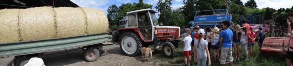 Exkursion auf den Bauernhof